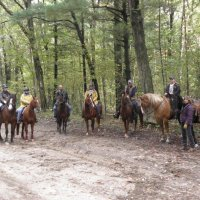 image horseback-riding-in-the-nursery-tract-eg-jpg