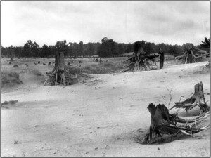The Norfolk County Sand Plain was heavily eroded by winds after clearing of forest cover by early settlers.