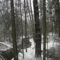 image early-snow-fall-in-turkey-point-tract-eg-jpg